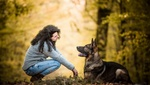 Обои Девушка с овчаркой сидят в лесу, by Daphne