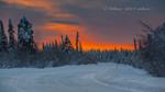Обои Зимняя дорога в лесу, (С новым 1019 годом!). Фотограф Роман Горячий