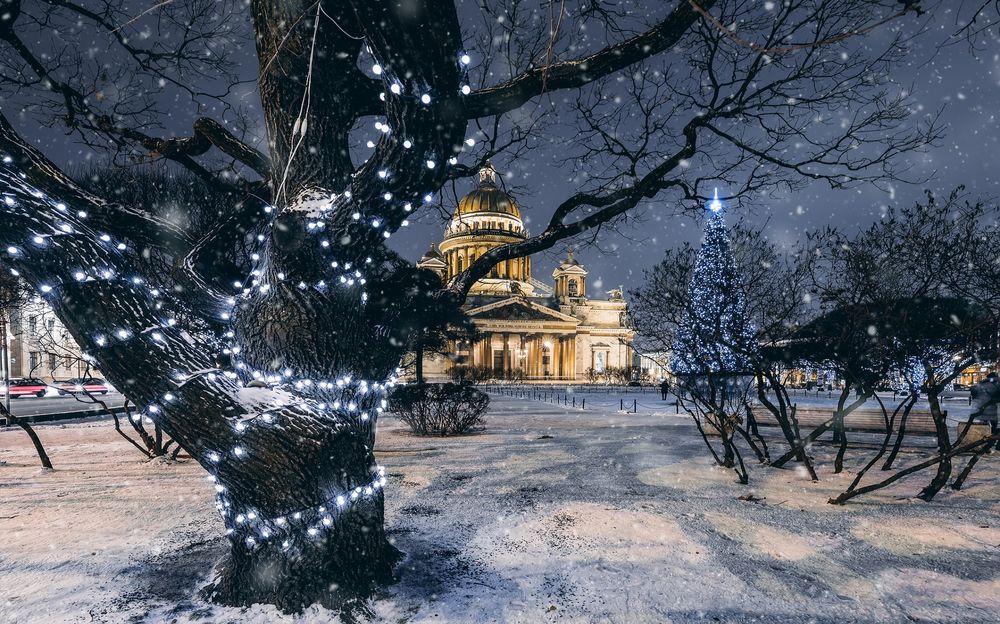 Обои для рабочего стола Исаакиевский Сквер зимой, фотограф Andrei Mikhailov