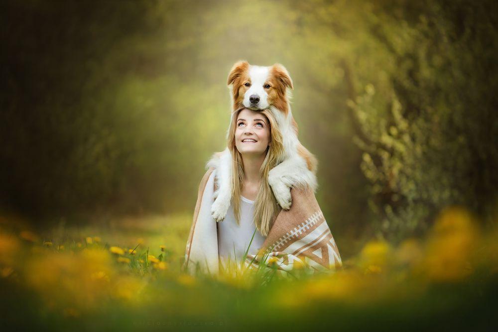 Обои для рабочего стола Девушка с собакой позируют на поляне