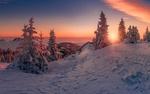Обои Зимний закат над елями. Фотограф Friedrich Beren