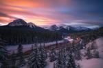 Обои Железная дорога проходит через зимний лес