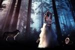 Обои Балерина стоит в лесу и на нее смотрит волк