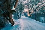 Обои Заснеженная дорога в деревню Ugljesici, Vogosca, Bosnia / Углесичи, Вогоска, Босния, by Mevludin Sejmenovic