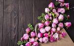 Обои Розовые цветы на дощатой поверхности