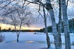 Обои Закатный зимний пейзаж с березами на переднем плане