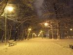 Обои Освещенная аллея ночного зимнего парка, by Surfdeluxe