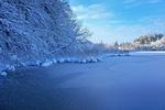 Обои Замерзшая река с деревьями в зимнем наряде на берегах погожим зимним днем, by Stefan Schweihofer