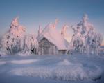 Обои Избушка и деревья, покрытые снегом / Пломбирный Домик, фотограф Zargo Dinn