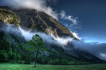 Обои Зеленеющее дерево на фоне гор в облаках