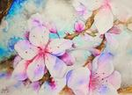 Обои Весенние цветы вишни, by Yonnyka