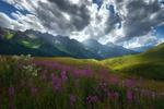 Обои Лето в горах. Фотограф sozel