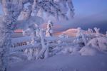 Обои Заснеженная природа Финляндии в январе / В гостях у зимы, фотограф Максим Евдокимов