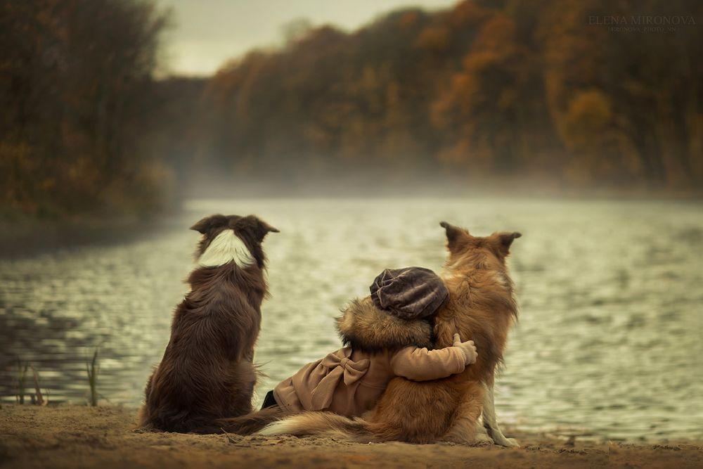 Обои для рабочего стола Девочка сидит между двух собак, прижавшись к одной из них, на берегу реки осенью, фотограф Елена Миронова