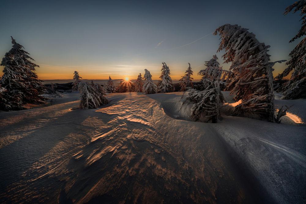 Обои для рабочего стола Зимний закат над елями, by Robert Didierjean