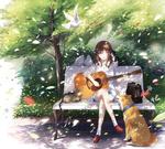 Обои Девочка сидит с гитарой на лавочке рядом с кошкой и перед ней сидит пес, by Senacha