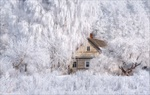 Обои Деревянный ветхий дом в зимнем лесу, Псковская область / Зимняя сказка, фотограф Влад Соколовский