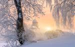 Обои Зима в Муринском парке, Санкт-Петербург, фотограф Ed Gordeev