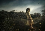 Обои Девушка в легком платье стоит в поле, фотограф Джессика Дроссен