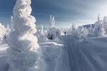 Обои Снежная Долина, мужчина стоит на дороге, фотограф Сергей Гарифуллин