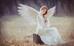 Обои Девушка - ангел сидит на пне