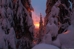 Обои Работа - Сказки зимние. Зима на Свидовецком хребте, Карпаты. Фотограф Алексей Медведев