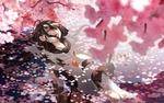 Обои Школьница лежит в воде под цветущей сакурой