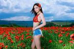 Обои Симпатичная девушка на цветущем поле маков