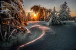 Обои Солнце понимается над зимними елями, by Robert Didierjean