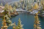 Обои Зимнее озеро в окружении заснеженных лиственниц, Алтай, долина Куюктанар, фотограф Павел Филатов