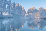 Обои Лебедь на реке морозным утром, фотограф Александр Гвоздь