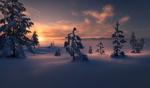 Обои Тихое зимнее утро в Ringerike, Norway / Рингерике, Норвегия, by Ole Henrik Skjelstad