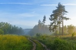 Обои Туманное летнее утро, фотограф Александр Гвоздь