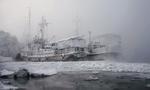 Обои Рыбацкие баркасы, покрытые изморозью, пришвартованы у берега зимой, фотограф Марина Фомина