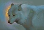 Обои Белый волк, by Servaline