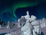 Обои Зимняя скульптура из заснеженной ели под полярным сиянием, Кандалакша, Мурманская область, фотограф Андрей Баскевич