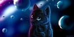 Обои Голубоглазый черный кот на фоне пузырей, by SeoGETIE