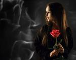 Обои Девушка Даша с длинными волосами держит красную розу в руках, фотограф Сергей Сорокин