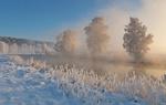 Обои Холодное утро, река Свислочь, Белоруссия, фотограф Александр Гвоздь
