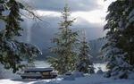 Обои Заснеженные лавочки и стол среди деревьев на берегу озера