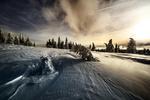 Обои Зимние ели под облачным небом, by Robert Didierjean