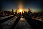 Обои Закат солнца над зимними елями, by Robert Didierjean