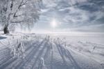 Обои Вид с Рюрикова Городища на Юрьев Монастырь, Великий Новгород / Зимнее солнце, фотограф Антон Кононов