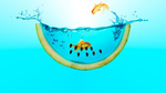 Обои Золотые рыбки в аквариуме, форма арбуза
