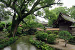Обои Японский домик в парке у речушки