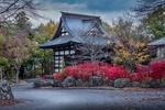 Обои Традиционный японский дом у дороги в осеннюю пору, Япония / Japan