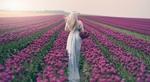 Обои Девушка стоит на поле тюльпанов