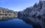 Обои Зимний лес на берегу озера