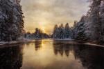 Обои Зимнее озеро в лесу на рассвете