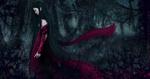 Обои Девушка в бордовом платье идет по Лесу самоубийств-Aokigahara, Japan / Аокигахара, Япония, by Cecilia G. F